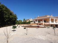 casa-grande-landscaping-large